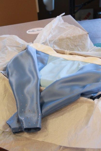 Blue Sleeping Beauty - Finished-62